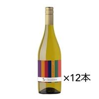 【ケース販売】<チリ>カマレロ シャルドネ 白 750ml×12本【別送品】