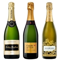 メダル受賞シャンパン・カヴァ・スパークリング飲み比べ 3本セット【別送品】