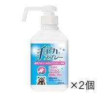 【ネット限定】健栄製薬 手ピカスプレー 420ml×2個