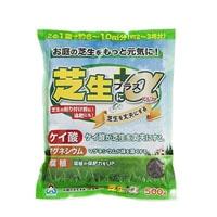 朝日 芝生にプラスα  500g