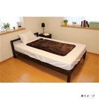 【数量限定】広電 フランネル電気毛布敷 CCA552B-CZ