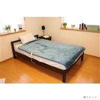 【数量限定】広電 フランネル電気毛布掛敷 CCBR801HJ