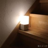 持ち運べる灯り LEDセンサーライト CZ-012