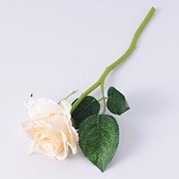 ショートローズ ホワイト 30cm