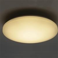 LEDシーリング 調色タイプ CZ−45RL