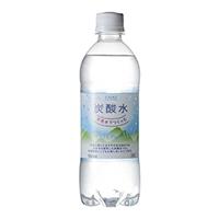 【ケース販売】天然水炭酸水 500ml×24本