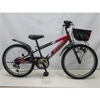 【自転車】【全国配送】ジュニアマウンテンバイク サンダーフォース�V 外装6段 20インチ レッド/ブラック【別送品】