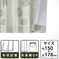 遮光性カーテン モンステラ グリーン 150×178 2枚組