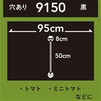 菜園ホールマルチ 黒 9150 10m