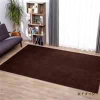 防ダニ 平織りカーペット アルティ 4.5帖 ブラウン