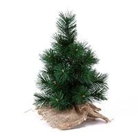 【数量限定】テーブルモミの木(グリーン)30cm