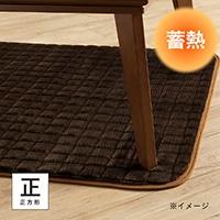 【2019秋冬】蓄熱こたつ敷きパッド タンネ&pet 正方形 95×95