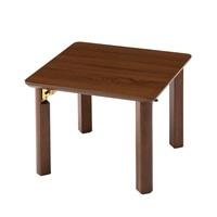 G2 コンパクトテーブル 50×50 ブラウン