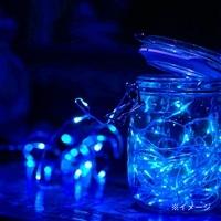 【数量限定・2017秋冬】LEDフェアリーライト30球ブルー