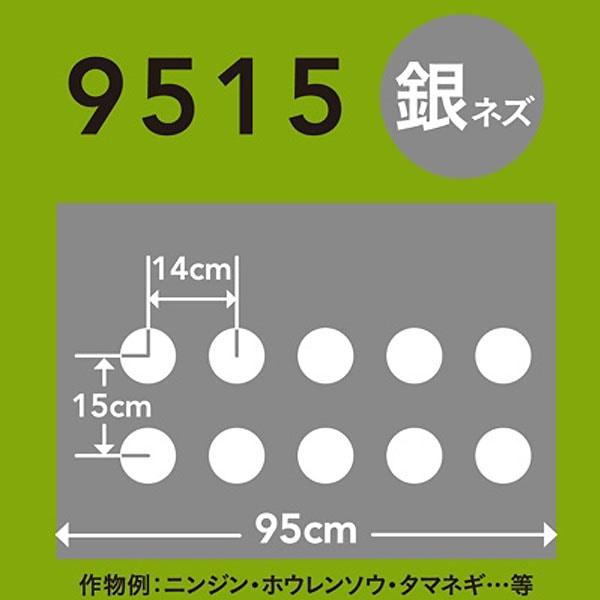 ホールマルチ 銀ネズ 9515×200m 60φ