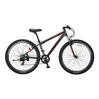 【自転車】【全国配送】YG−278 ビッグバイク29er マットブラック【別送品】