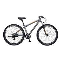 【自転車】【全国配送】YG−279 ビッグバイク29er ガンメタ【別送品】