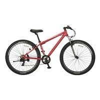 【自転車】【全国配送】YG−281 ビッグバイク29er ダークレッド【別送品】