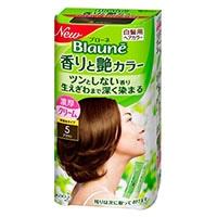 花王 ブローネ 香りと艶カラークリーム 5