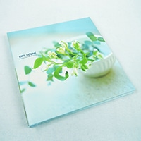 N.プラコート Lサイズアルバム ブルー 1001