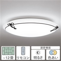LEDシーリング12畳アイアンクラフト SH8250LDR