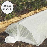 寒冷紗 白       1.8mX5m