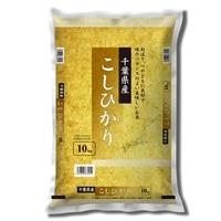 令和元年産 千葉県産 こしひかり 10kg【別送品】