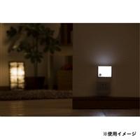 LED明暗センサーライト CZ-005