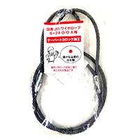 国産JISワイヤーロープ トヨロック12X1m