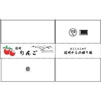 【店舗限定】信州りんごダンボール 5kg 110H