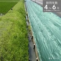 畦クロス グリーン 2×100m