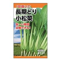 ニチノウ 長期どり小松菜
