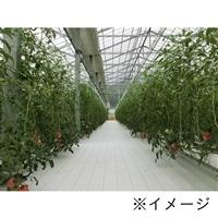 高反射防草シート ルンルンシート 白ピカ 2×100m