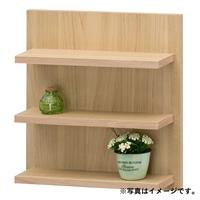 簡単取り付け壁掛けラック ラデコ LAD-4040NA【別送品】
