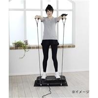 アルインコ バランスウェーブ NEXT【別送品】