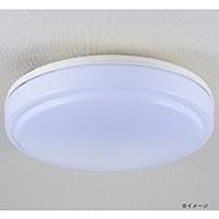 オーム電機 LED内玄関灯 昼光色 LT-Y18D-G 07-9902