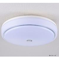 オーム電機 LED内玄関灯 センサー 電球色 LT‐Y18D‐G‐PIR 07-9903