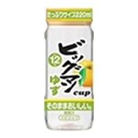 ビッグマンカップ ゆず 12° 220ml【別送品】