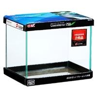 GEX グラステリア 250