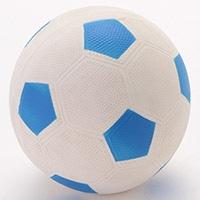 わんわんサッカー ブルー