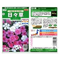 花の種 日々草 パレードミックス