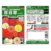 花の種 百日草 中輪系プルチノミックス