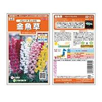 サカタのタネ 金魚草パレードミックス