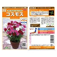 花の種 コスモス ドワーフセンセーションミックス