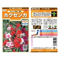 花の種 ホウセンカ カメリア咲き混合