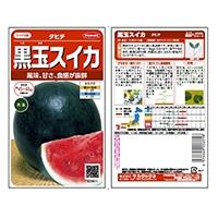 野菜の種 タヒチ 黒玉スイカ