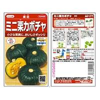 野菜の種 栗坊 ミニ栗カボチャ
