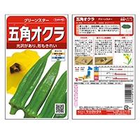 【数量限定】野菜の種 グリーンスター 五角オクラ