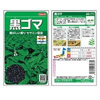 野菜の種 黒ゴマ