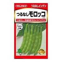 つるなしモロッコ菜豆